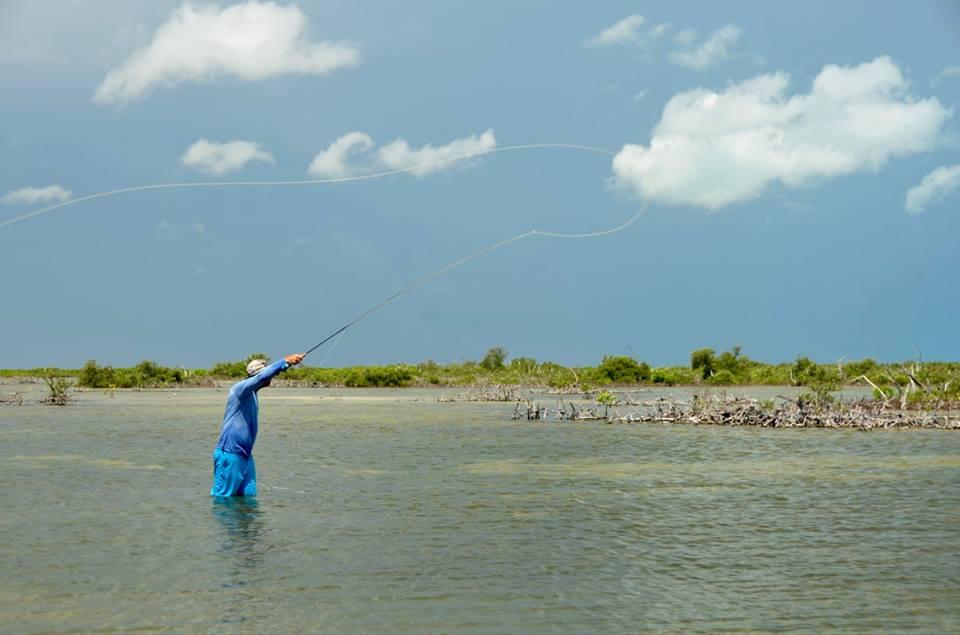 Isla de cozumel pesca con mosca de bonefish en la rviera for Fly fishing cozumel